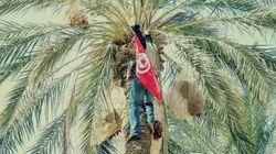 Jemna: L'exemple à suivre ou quand l'État se
