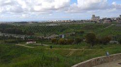 Alger : Le scandale Dounia Parc