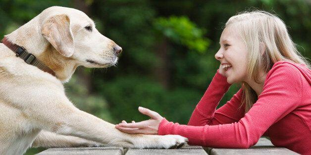 Votre chien comprend vraiment les mots que vous lui dites, vous pouvez arrêter les