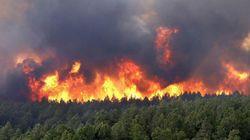 Le nord du Maroc de nouveau touché par un feu de forêt, 190 ha