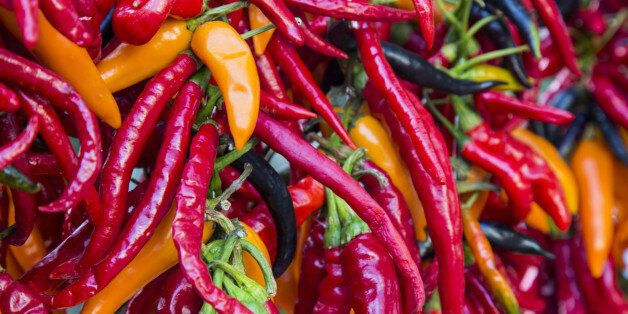 The chili pepper is the fruit of plants from the genus Capsicum, members of the nightshade family, Solanaceae....