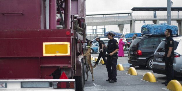 A sniffer dog spots migrants hiding in a fairground truck travelling from Spain's North African enclave...