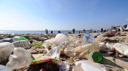 Incivisme, négligences, atteintes à l'environnement, le syndrome algérien (1ère