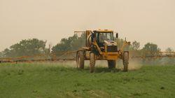 Biopesticides et biostimulants: Un marché en croissance au