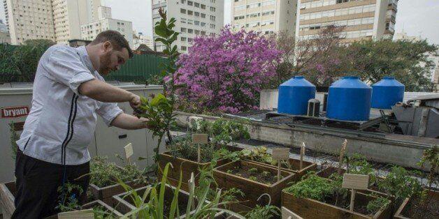 Au Brésil, les détritus des restaurants alimentent leurs propres