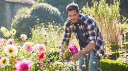 10 conseils pour transformer son jardin en petit