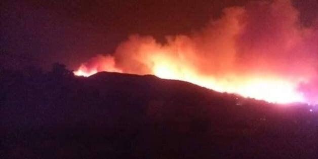 Des incendies se déclarent dans plusieurs forêts à Boumerdès