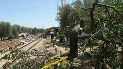 Italie: l'erreur humaine semble être à l'origine de la catastrophe