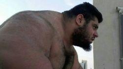 Dites bonjour au Hulk