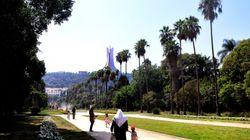 Alger: 15 milliards de dinars alloués ces trois dernières années à la réhabilitation