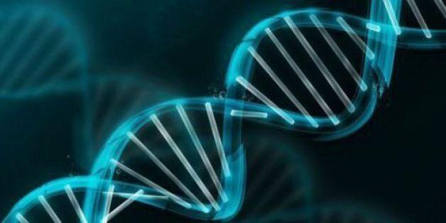 Bientôt un centre de recherche en génétique au