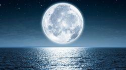 Le premier vol privé vers la Lune, c'est pour