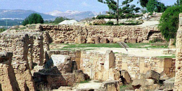 Carthage. Histoire d'une métropole