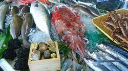 Concours du meilleur plat à base de poisson à