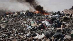 Déchets à Djerba: Carton