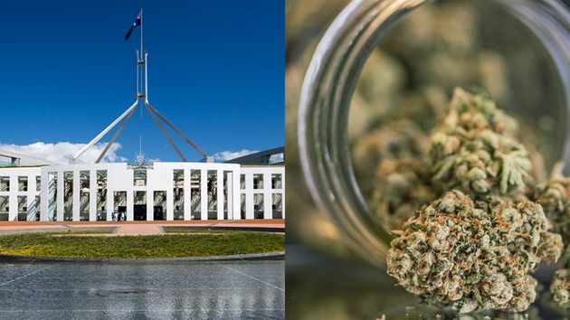 Canberra has passed a bill that legalises marijuana in the