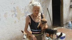 Les funérailles émouvantes de la dame aux chiens à