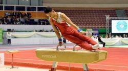 Championnat d'Afrique de gymnastique : l'Algérie termine à la 2e