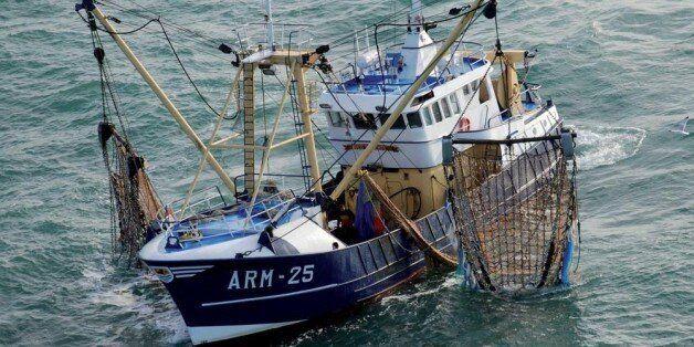 Le Maroc veut booster ses exportations de poisson vers les
