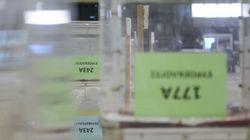 Υπέρ της ψήφου των απόδημων το ΚΙΝΑΛ: Ποιες είναι οι προτάσεις