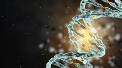 Vous pouvez désormais séquencer son génome sur une