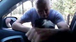 Il cane torna a casa due mesi dopo la scomparsa. La reazione del padrone è commovente