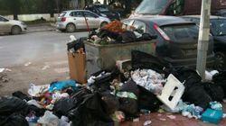 L'écologie en Tunisie entre environnementalisme de mode postrévolutionnaire et urgences environnementales et