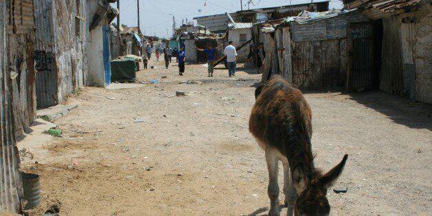 A Mohammedia, près 3000 ménages bidonvillois seront