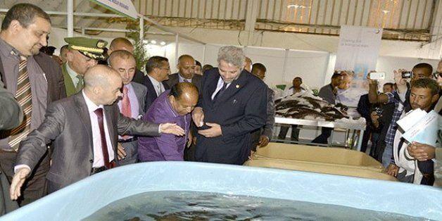 Inauguration d'une ferme expérimentale d'élevage de la crevette à