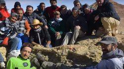 Le plus grand crocodile du monde découvert au sud de la