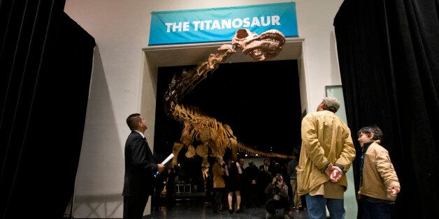 Visitors to the American Museum of Natural History examine a replica of a 122-foot-long dinosaur on display...