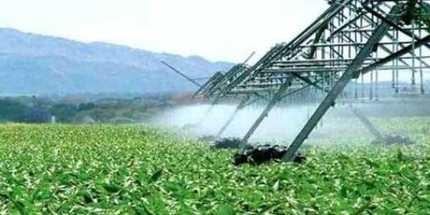 La sécheresse suscite des inquiétudes pour l'agriculture, pas pour l'eau