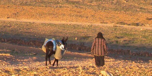 Au Maroc, la sécheresse pointe le bout de son