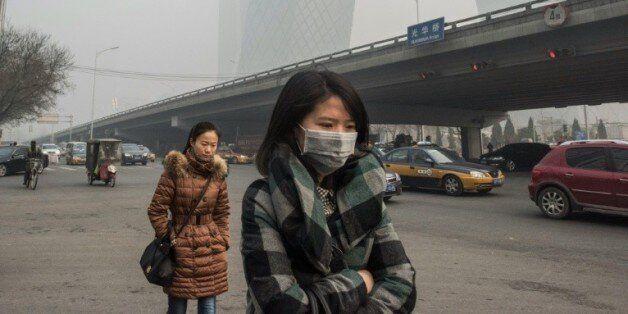 Une femme porte un masque pour se protéger de la pollution le 30 novembre 2015 à