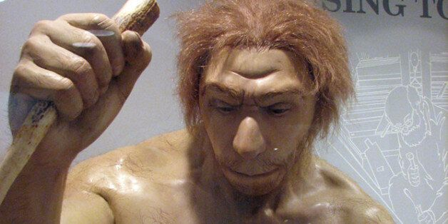 Sculpture of a Neanderthal man from the Ancestors exhibit at the Maxwell Museum of Anthropology, University...