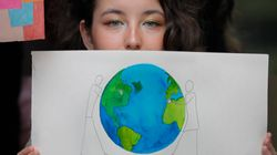 Combat pour l'environnement: deux solitudes
