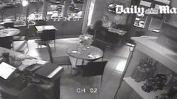 Attentats de Paris: Des images de l'attaque d'une terrasse sont
