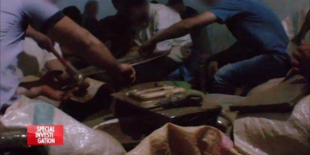 Canal + va diffuser une longue enquête sur le trafic de cannabis au