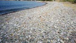 Le corps d'un enfant mort découvert sur une plage de Lesbos en