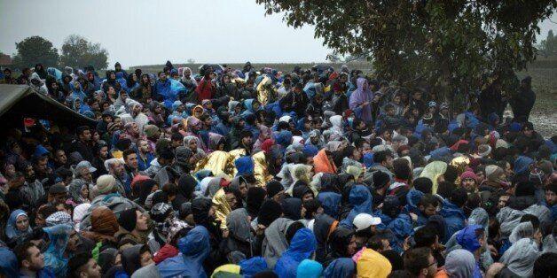 Des migrants attendent pour entrer sur le territoire de la Croatie, près du village serbe de Berkasovo,...