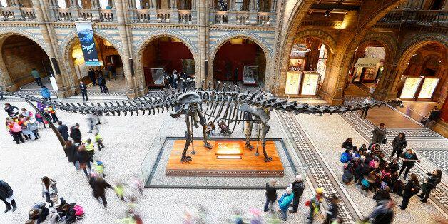 La fin des dinosaures ne serait pas seulement due à une