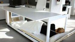 Envie d'une sieste au bureau? Voici le bureau-lit