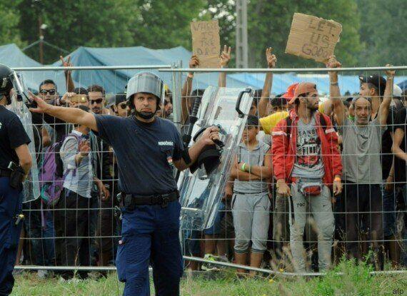 Hongrie : une vidéo sur la distribution inhumaine de nourriture dans un camp de