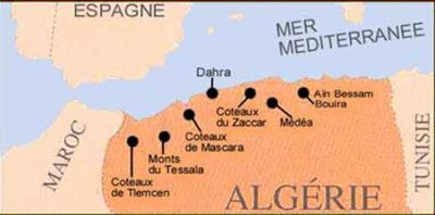 Les vins d'Algérie de retour au