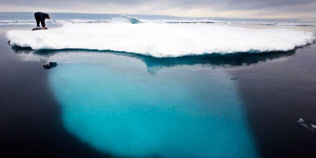 ARCHIV - Ein Inuit Jaeger beugt sich im Juli 2007 zu einem toten Seehund auf einer schmelzenden Eisscholle...