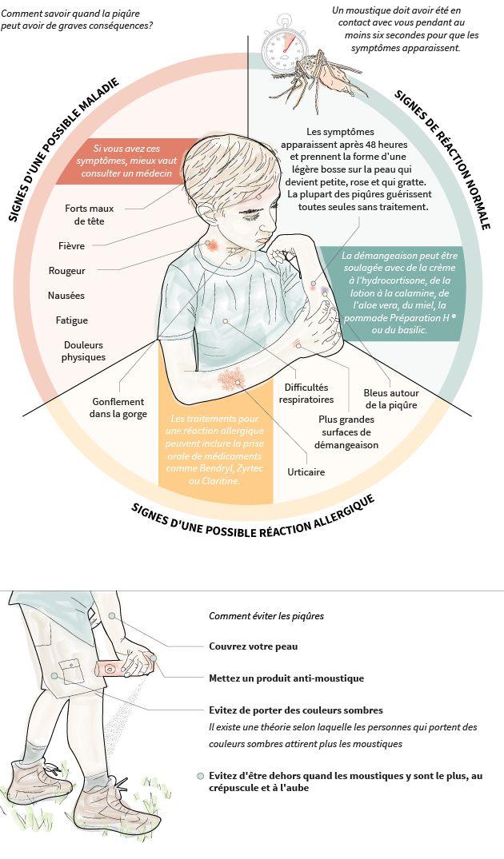 Piqûre de moustique: ce qu'il se passe dans notre corps et les signes d'une réaction