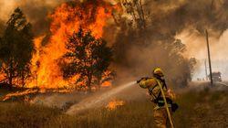 Les impressionnantes photos des incendies ravageant la