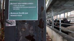 France immigration: Les Algériens plus nombreux que tous les
