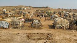 De l'Érythrée à l'Afrique, en passant par