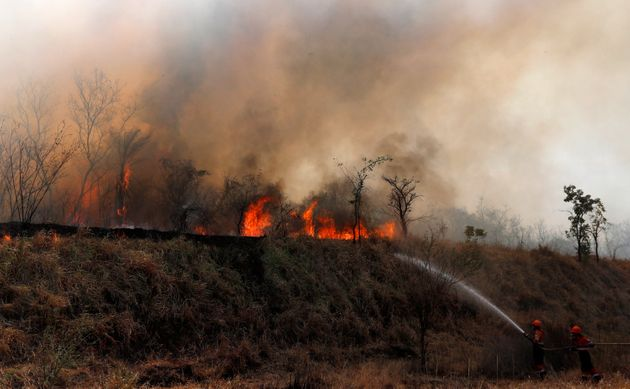Firefighters work to put out a fire in the Chiquitania forest on the outskirts of Robore, Bolivia, Friday,...